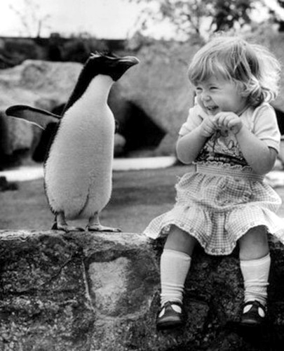 girl laughing at penquin
