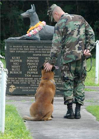 soldier and dog at grave